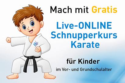 Schnuppertraining Online